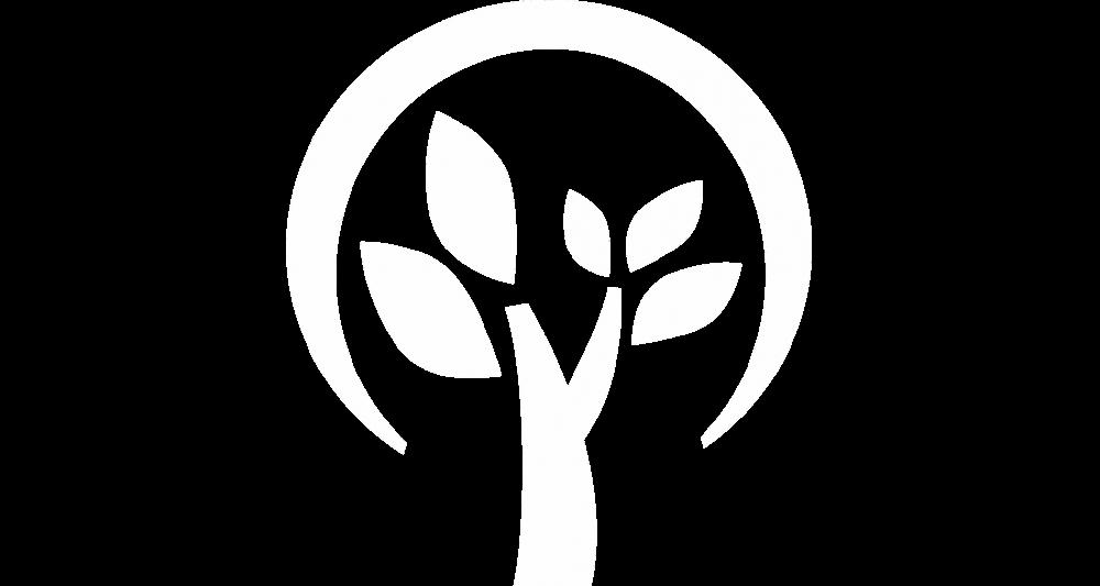 Manejo de Árvores